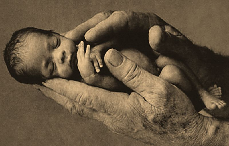 Infant in hand